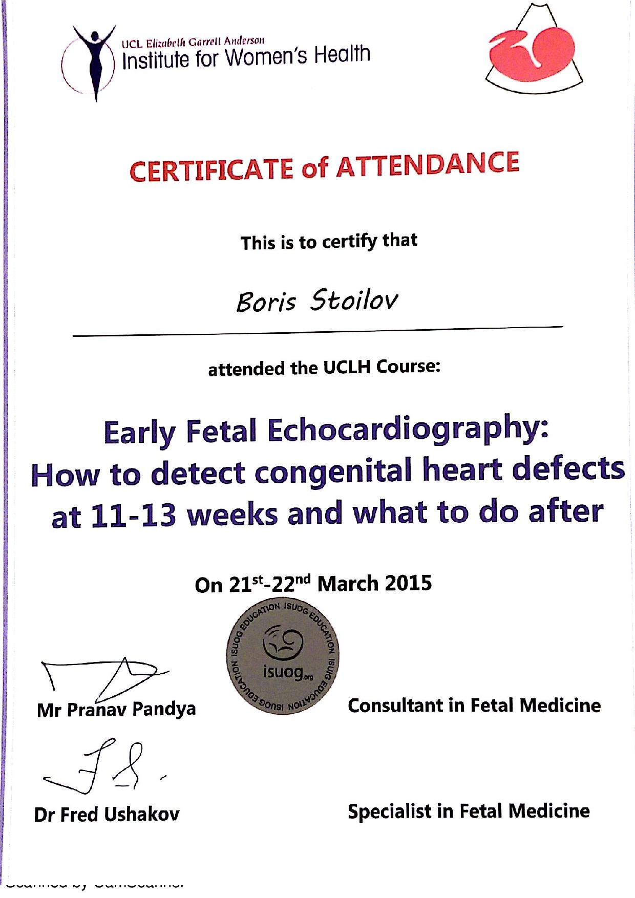 Early Fetal Echocardiography
